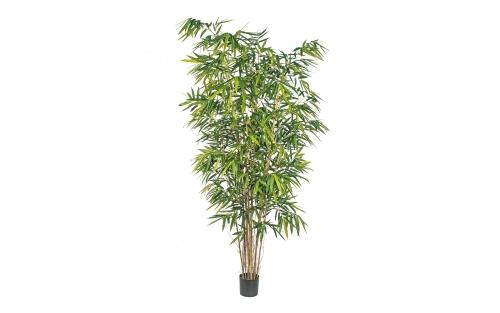 Bamboo de Luxe 270cm