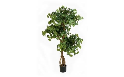 Japanese Tree 150cm