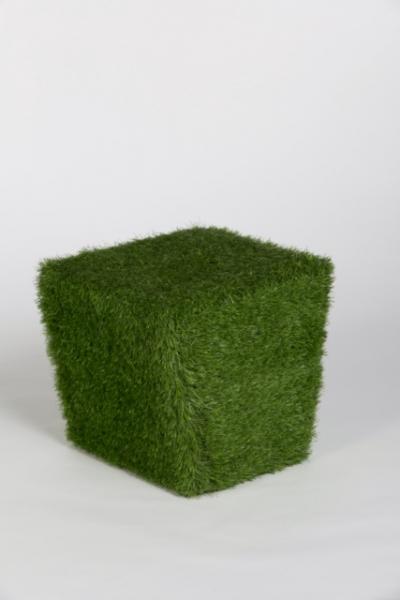 Poef Grass