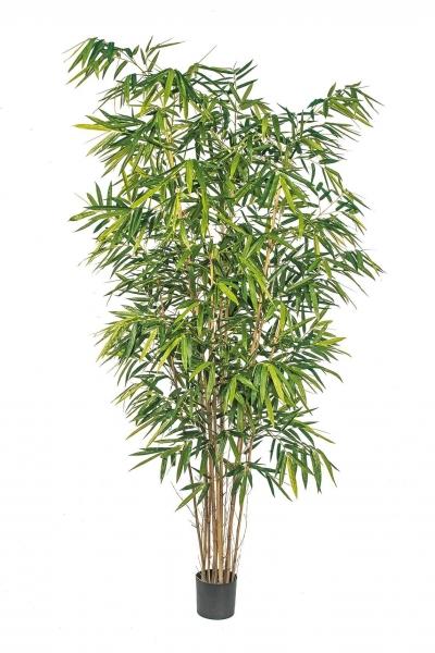 Bamboo de Luxe 240cm